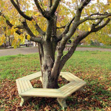 6-Eck-Baumbank Kiefer Viel Platz rund um Baum oder Tisch ... Die 6-Eck-Bank bietet eine große Sitzfläche und ist daher optimal geeignet für Schulhöfe und öffentliche Spielplätze. Gerne werden die Bänke um einen schattenspendenden Baum herum aufgestellt oder mit einem Tisch in der Mitte. Die 6 vormontierten Sitzflächen werden direkt mit den massiven Füßen verschraubt für einen sicheren und stabilen Stand. - Kisus e.K. - Kinder, SPiel und Spaß - FAchgroßhandel für Kindergarten, Kita, Hort und Schule